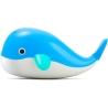 Baleine Kid O