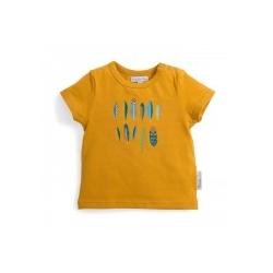 T-shirt curry imprimé plumes Zack 12 mois