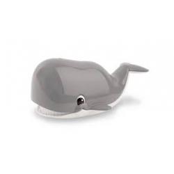 Mon ami la baleine
