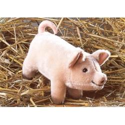 Kosen Bébé cochon