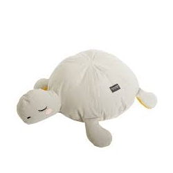 Roommate - Pouf tortue