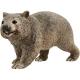 Wombat Schleich