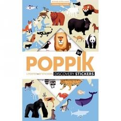 Mon poster en stickers - Animaux du monde