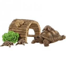Wild Life - Maison pour tortues