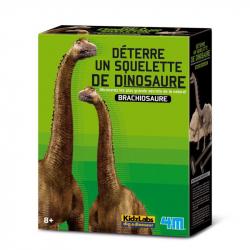 Déterre un squelette de dino - Brachiosaure