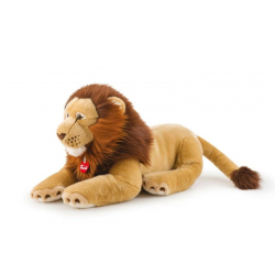 Lion Narciso